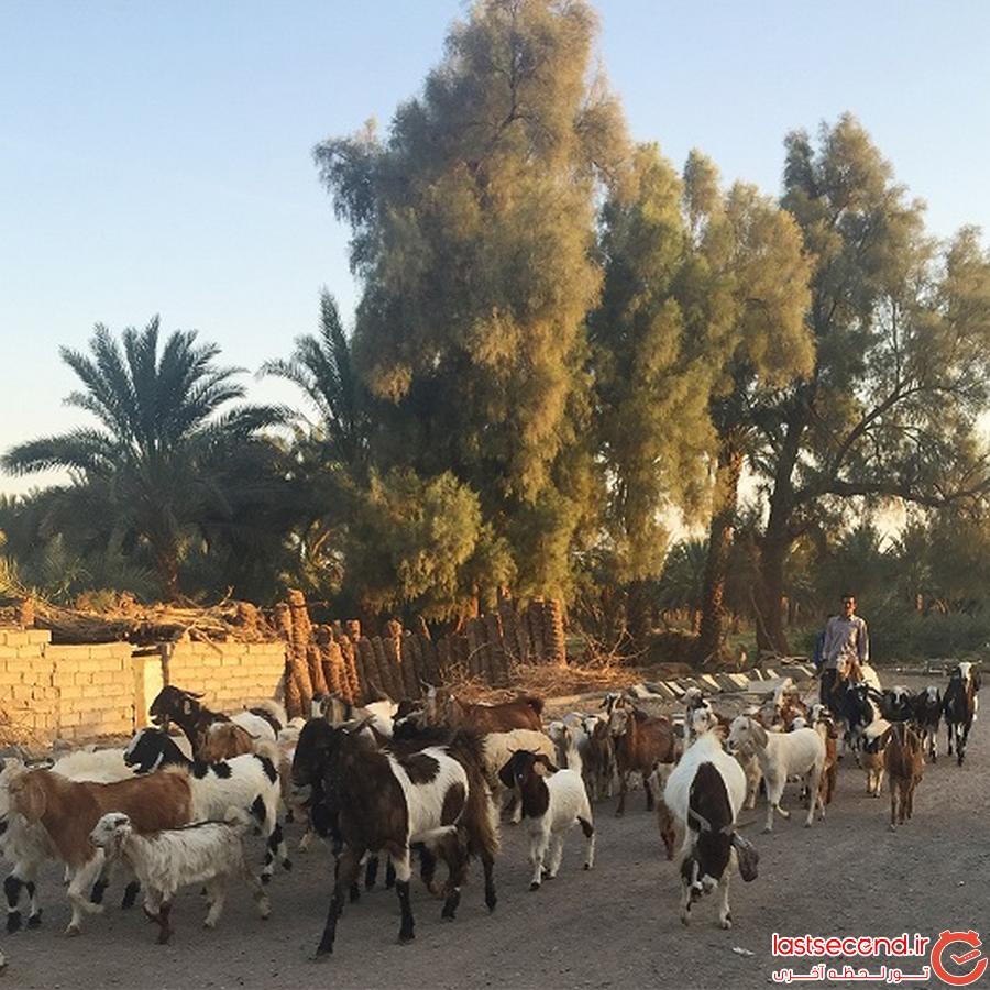 سفرنامه روستاى کشیت