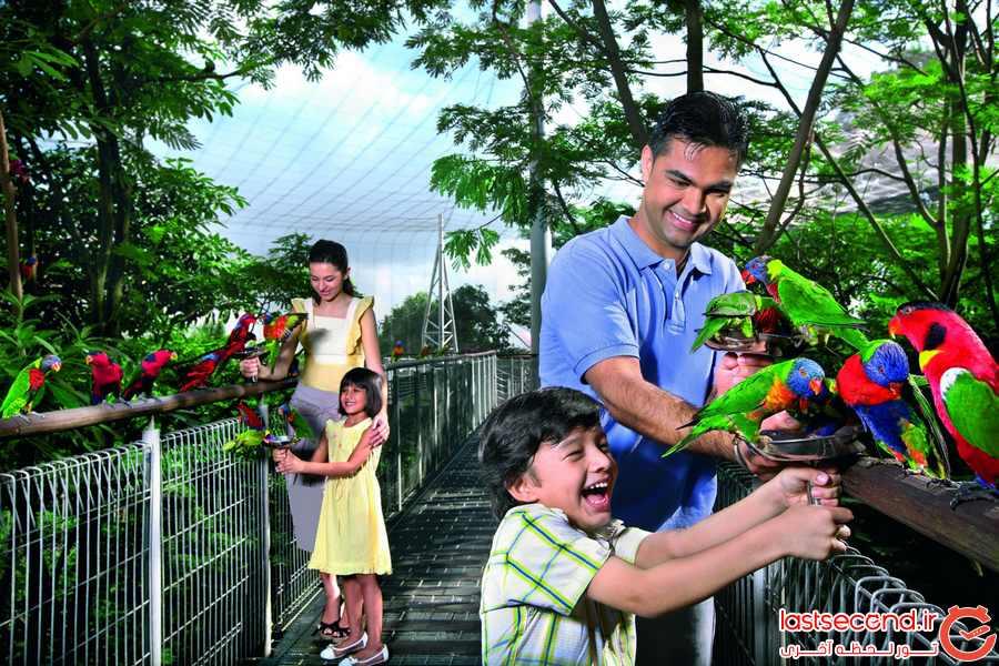 باغ پرندگان Jurong