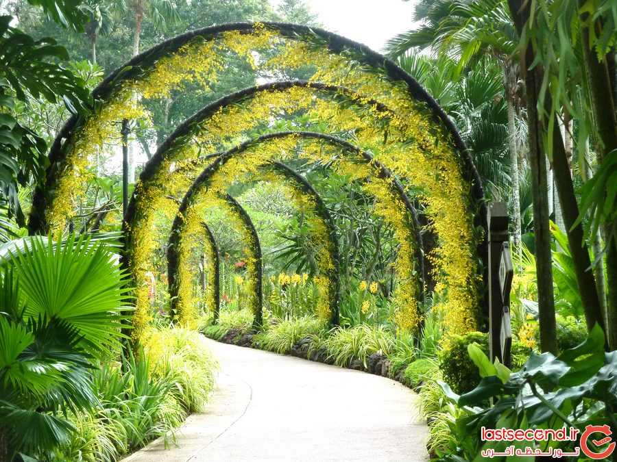 مجموعه ی بوتانیک گاردنز و باغ ارکیده