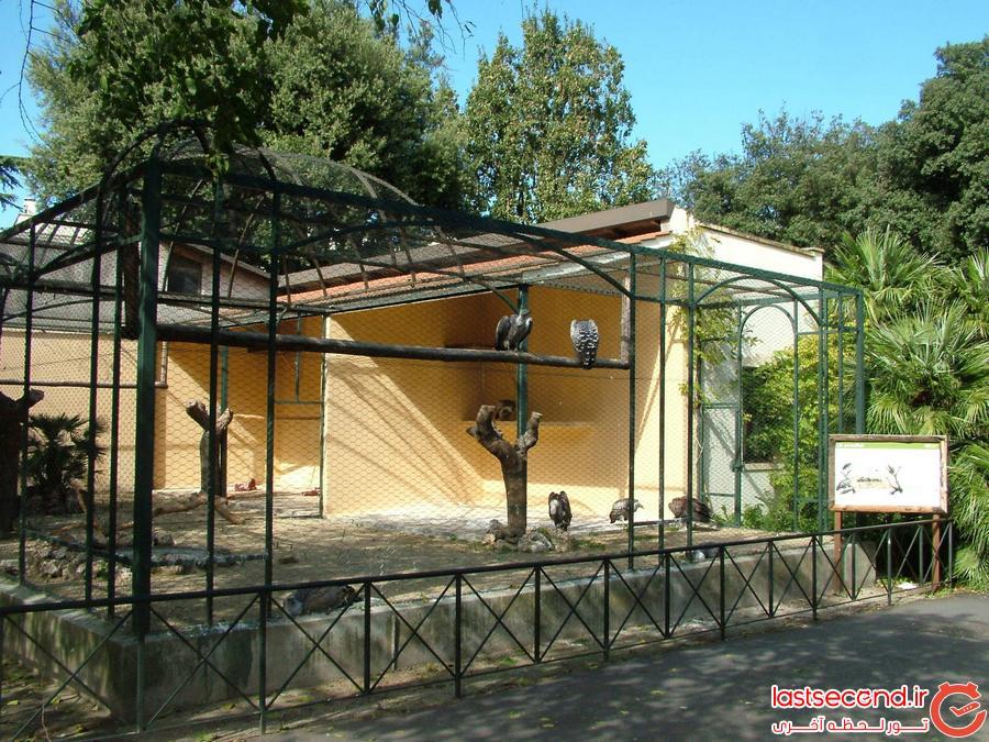 باغ وحش Bioaparco