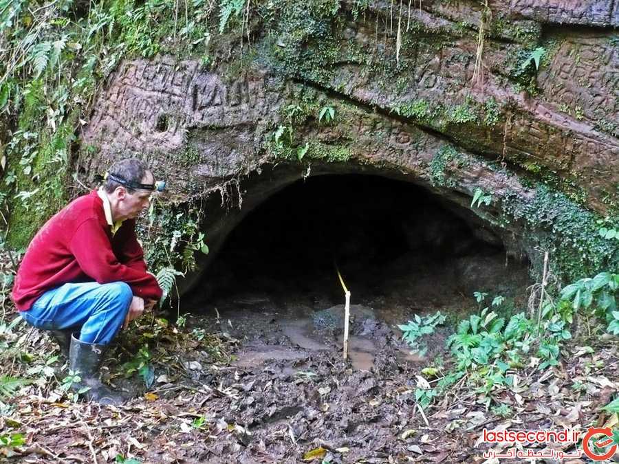 تونل های عظیمی که تنبل های ماقبل تاریخ آن ها را حفر کرده اند!