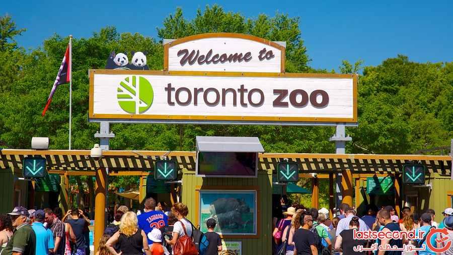 با تورنتو و جاهای دیدنی آن آشنا شوید