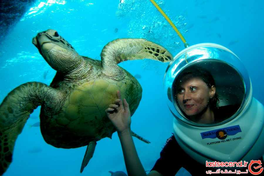 تفریحات بالی و کارهایی که باید انجام دهید