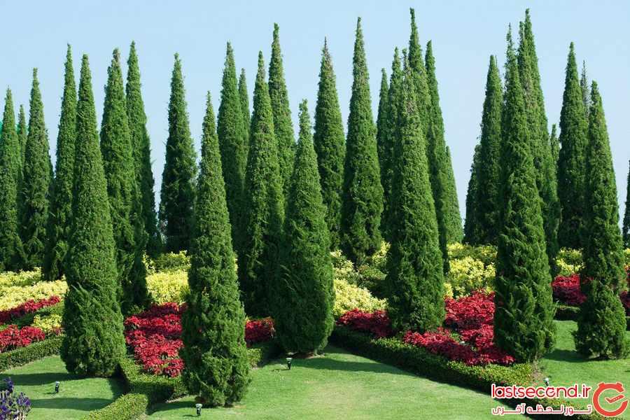 باغ گیاه شناسی کندی