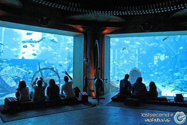 هزینه سفر به دبی دبی مال پارک آبی برج خلیفه باخ وحش زیر آب Wild Wadi