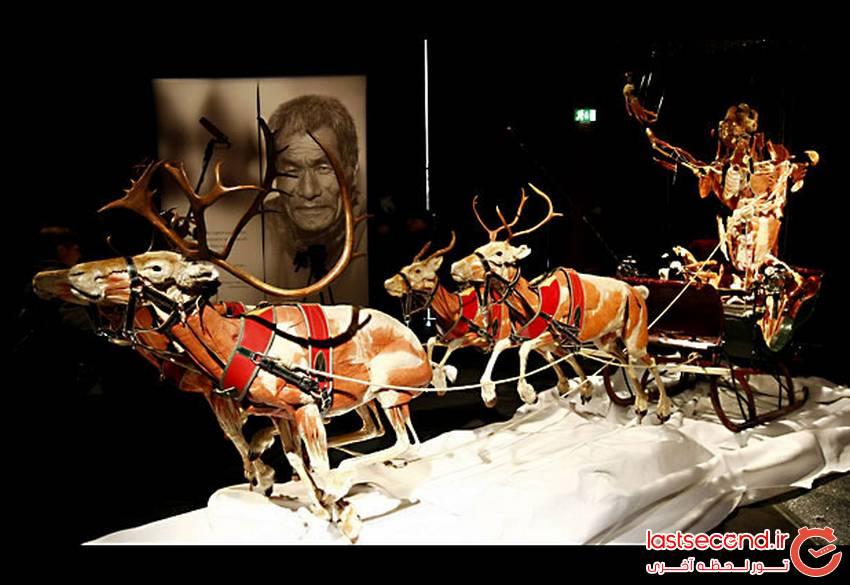 عجیب ترین موزه جهان