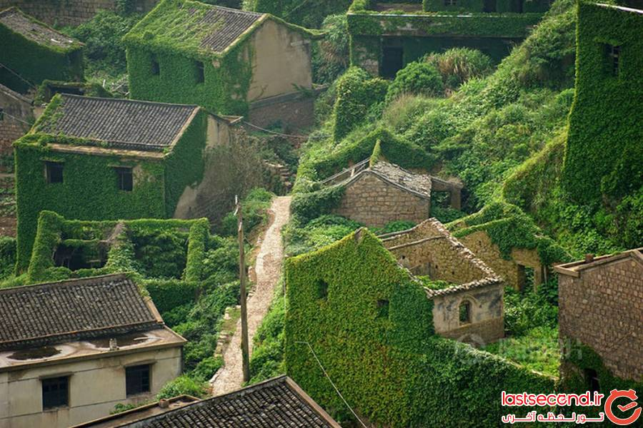 تصاویری زیبا از روستایی که تنها ساکنان آن درخت ها هستند