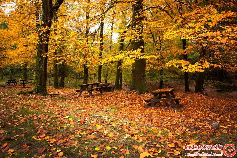 عکس فصل پاییز