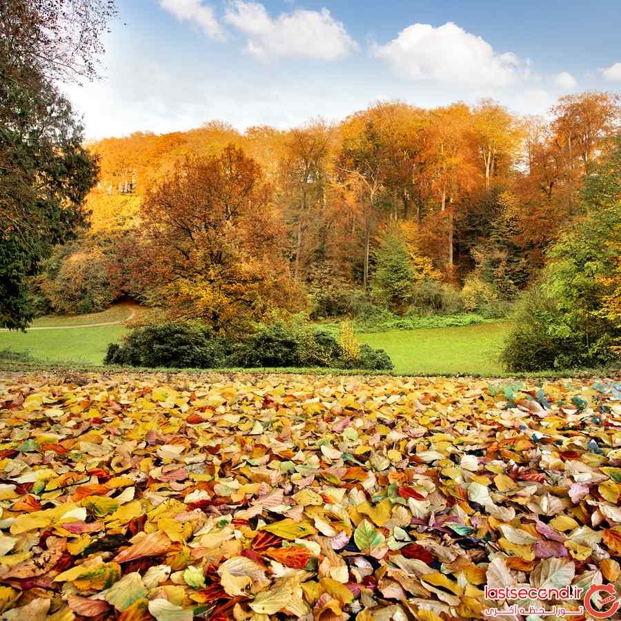 تصاویر پاییزی