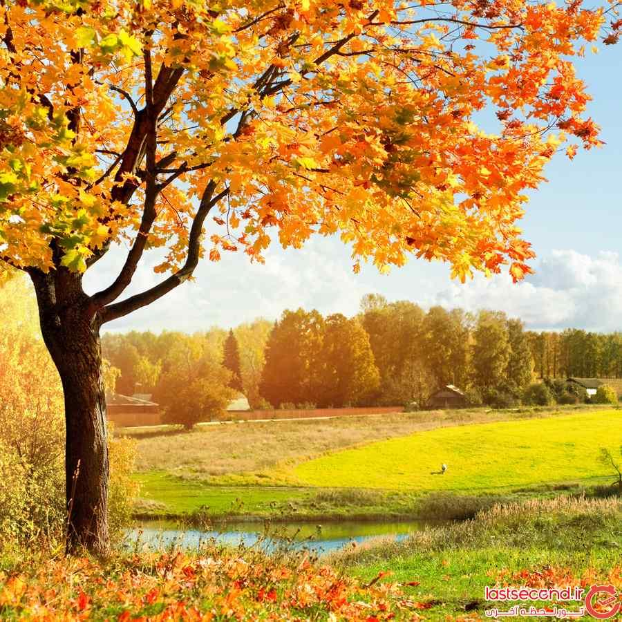 تصاویر پاییز