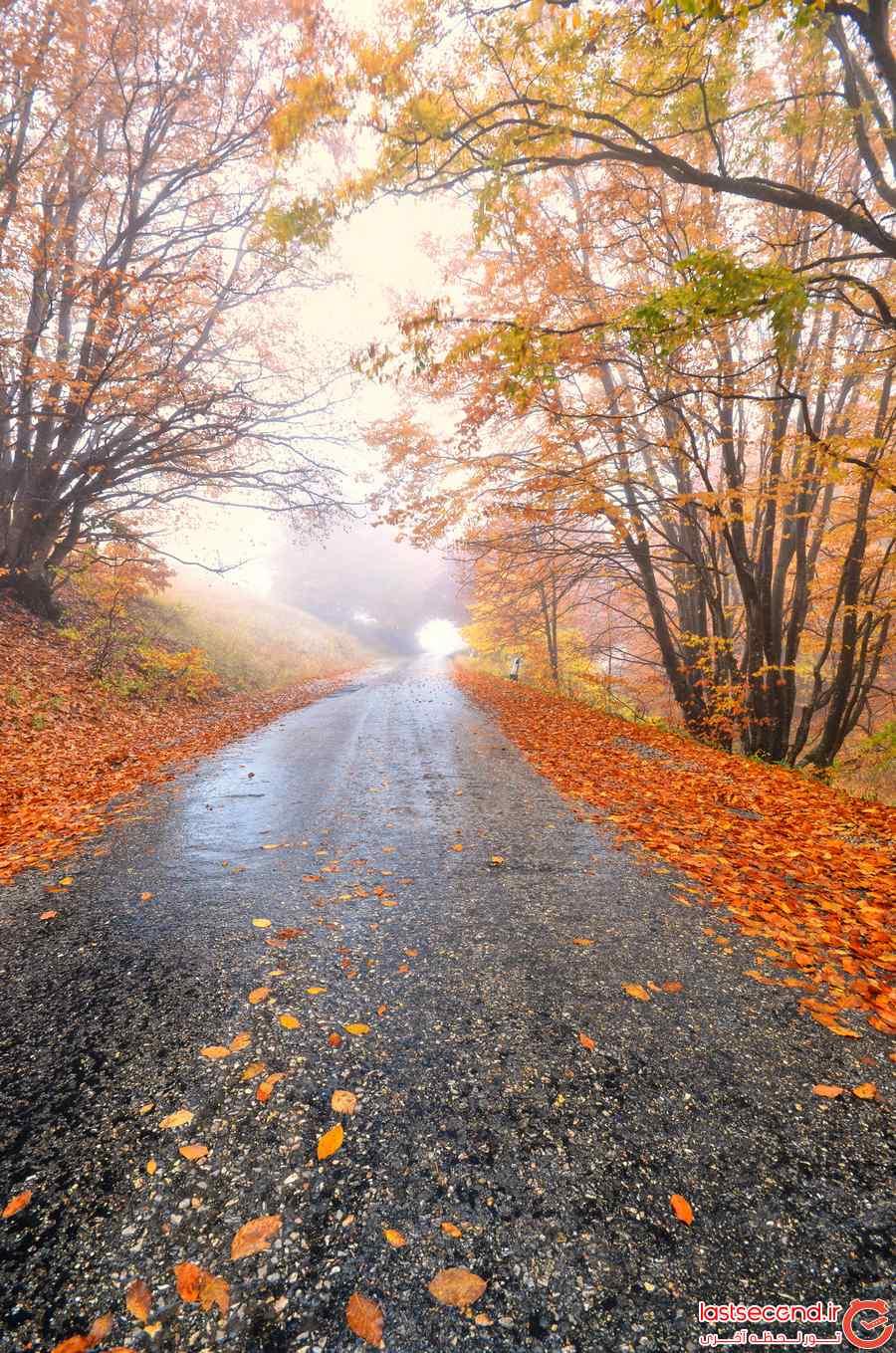 عکس پاییزی با کیفیت بالا