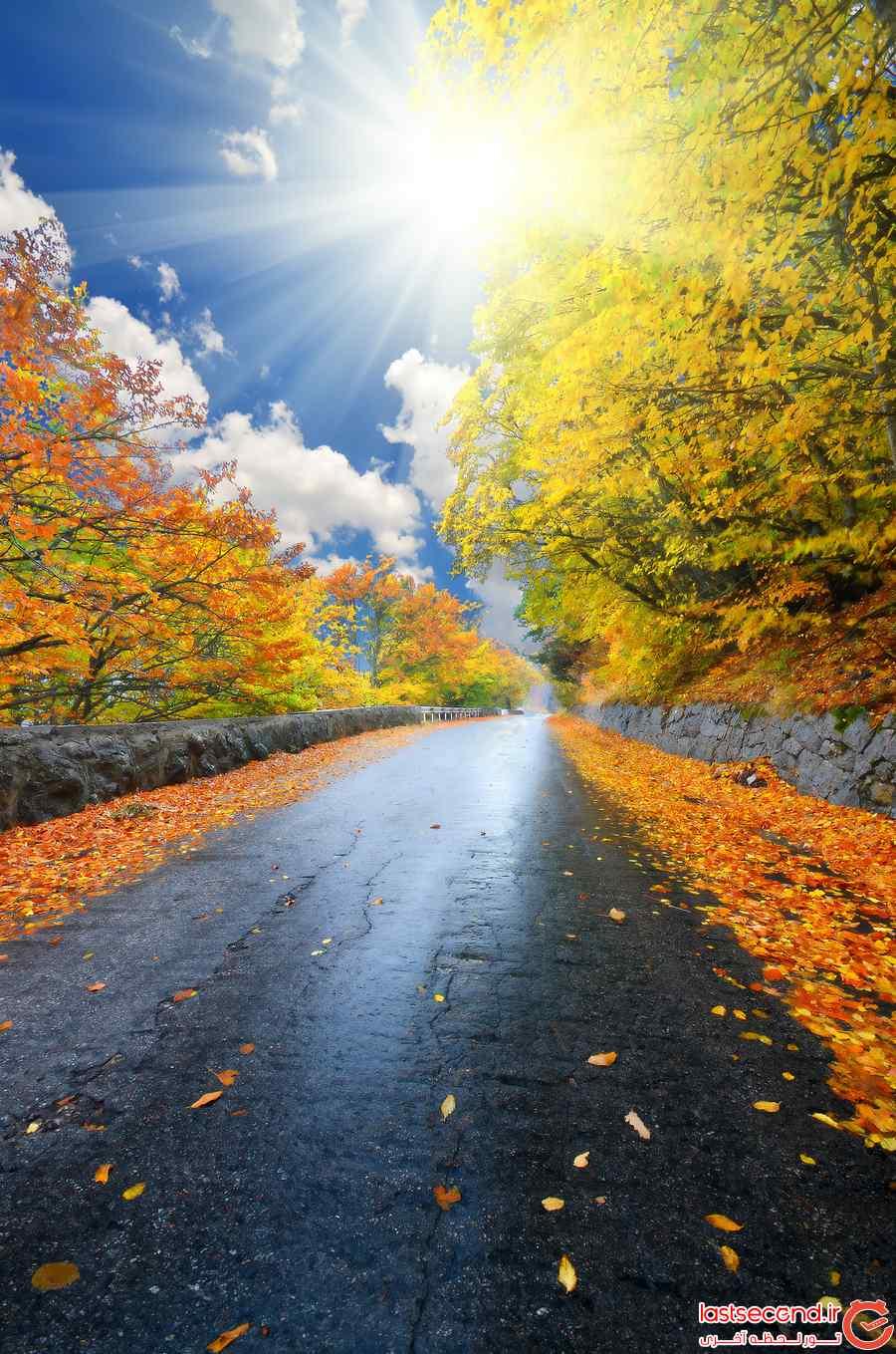 عکس های پاییزی زیبا