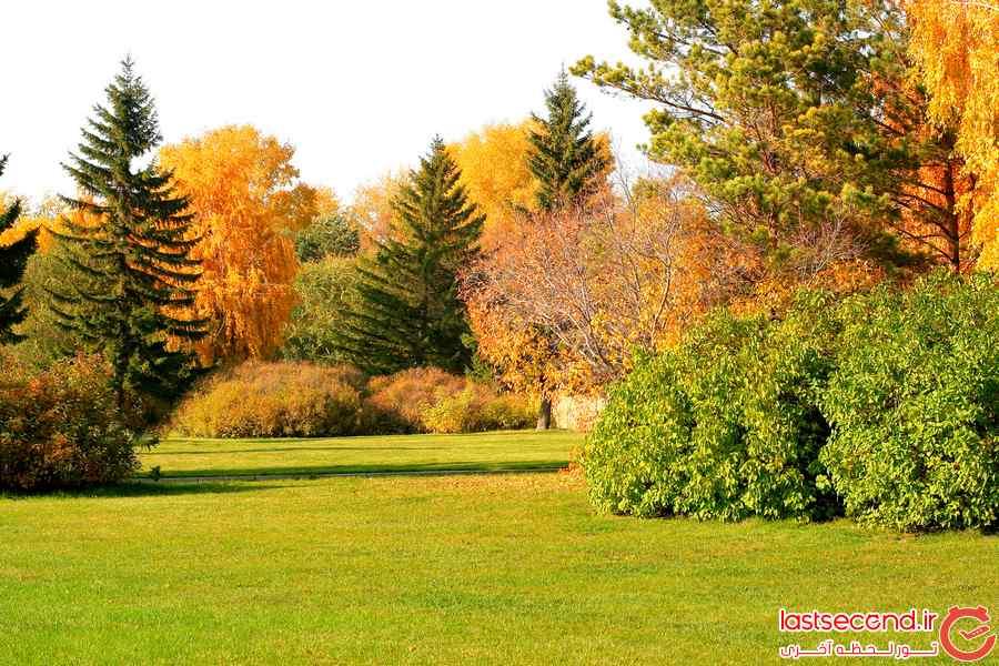 عکس هایی از پاییز