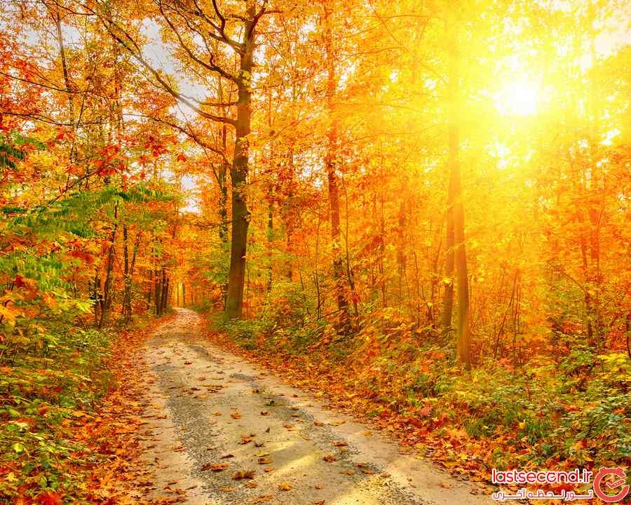 عکسهای پاییزی زیبا