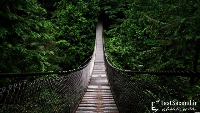 پل معلق کاپیلانو واقع در ونکوور کانادا