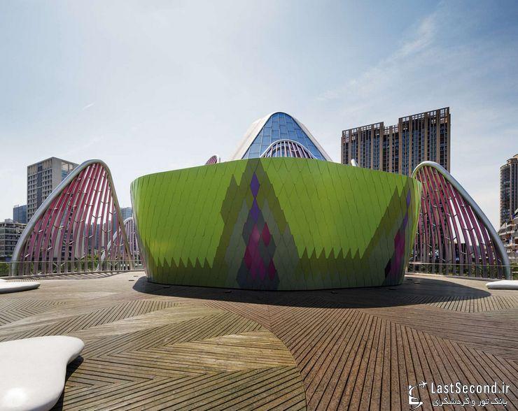 ساختمان  گلهای نیلوفر آبی در چین