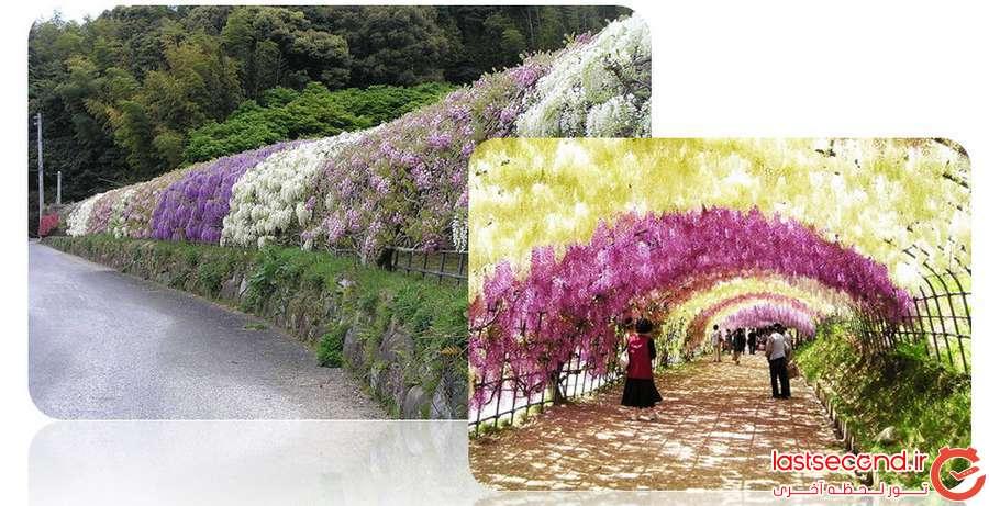 ایده های ساده ی زیباسازی/گردشگری برای زیبایی شهرمون